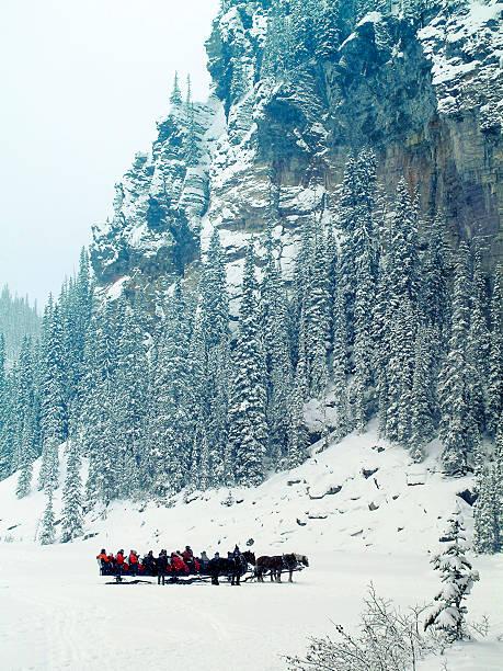 sleigh ride at lake louise, alberta,canada - lake louise stockfoto's en -beelden