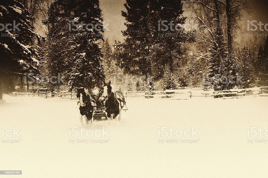 Sleigh Ride In The Snow royalty-free stock photo