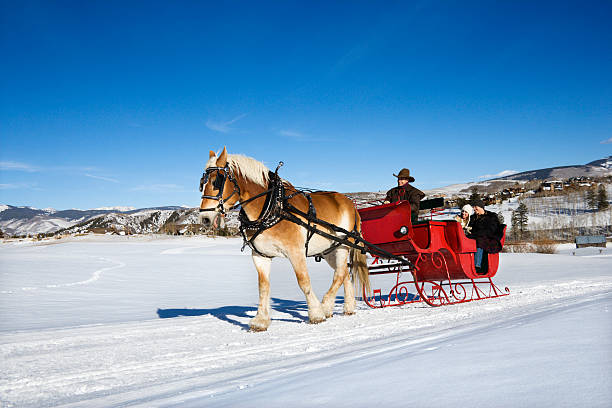 Sleigh ride. stock photo
