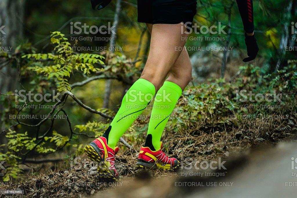 slender and beautiful legs girls stock photo