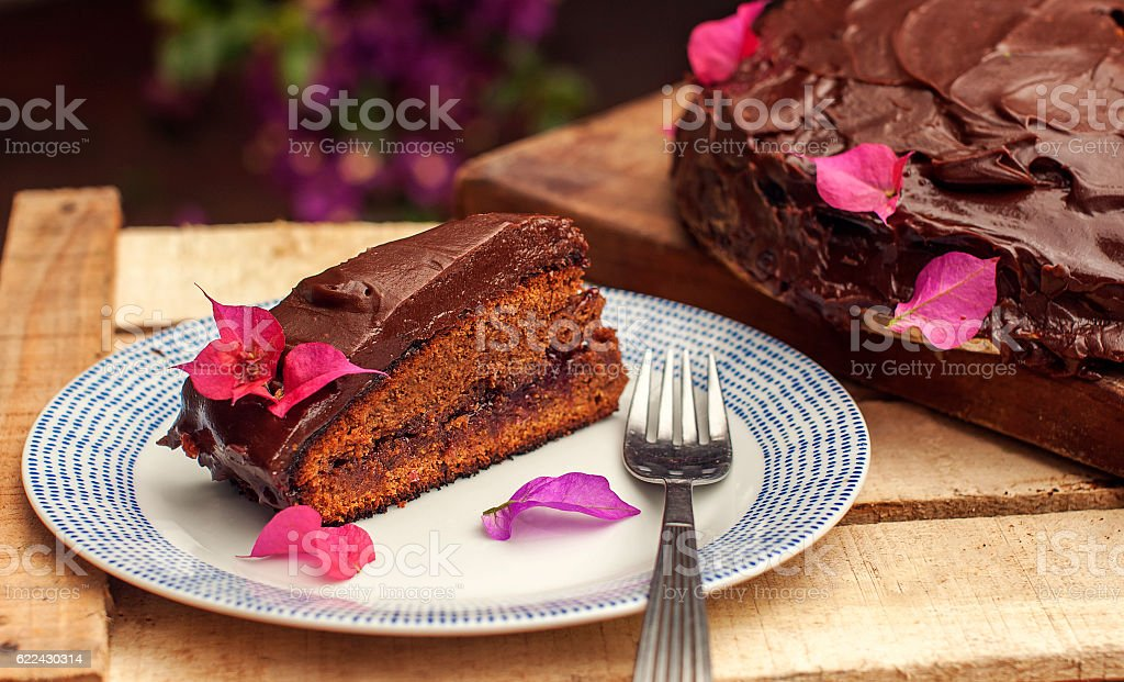 Slice of a chocolate cake on the plate stock photo