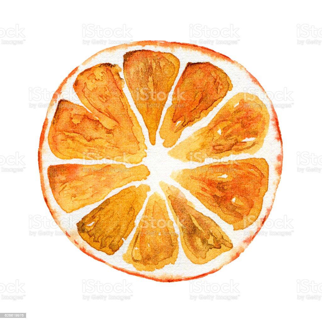 Slice of orange isolated on white background stock photo