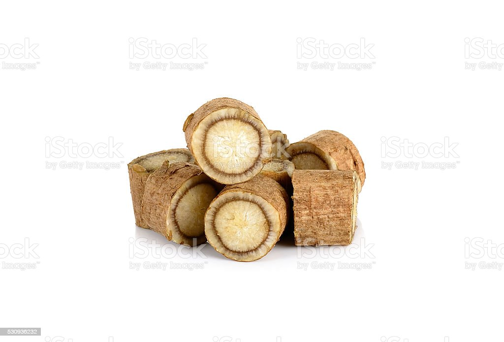 Sliced Burdock roots isolated on the white stock photo