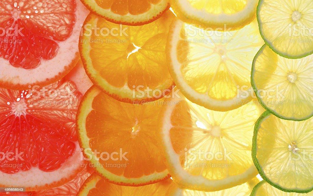Sliced citrus fruits background stock photo