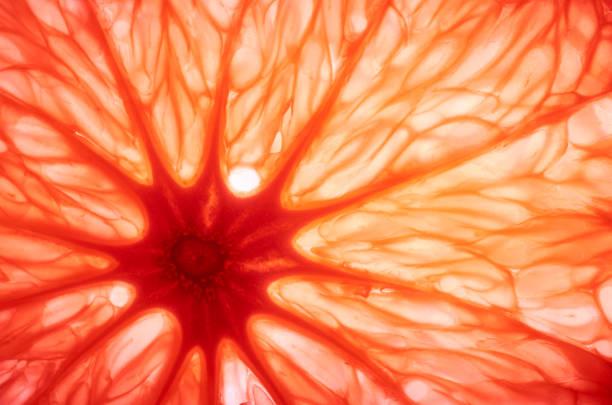 sliced juicy grapefruit abstract