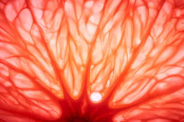 sliced juicy grapefruit
