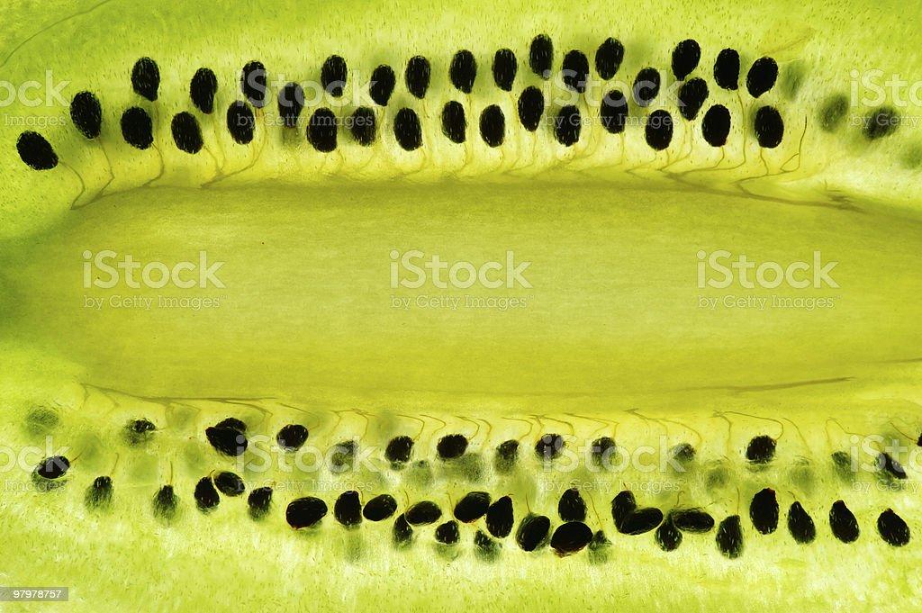 Sliced kiwi royalty-free stock photo