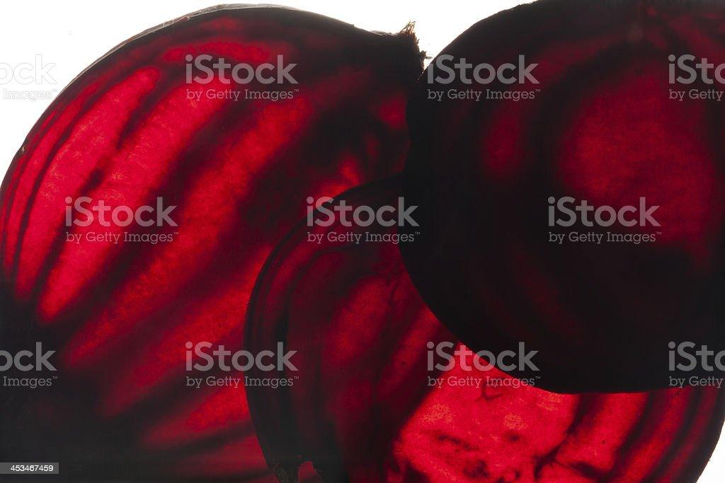 sliced raw beet stock photo
