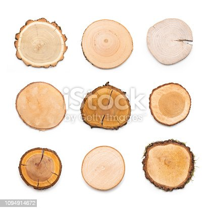 istock A slices of different wood types representing profile of cut tree. 1094914672