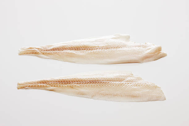 slices of fresh halibut fish file,close up - heilbutt stock-fotos und bilder