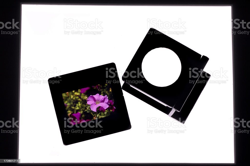 Slide and magnifier royalty-free stock photo