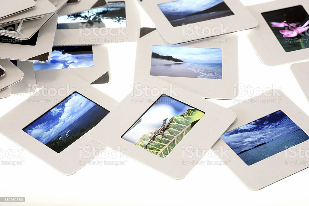 Slides with tropical images. royalty-free stock photo