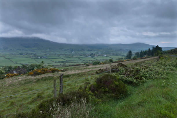 Slievenaglogh View, east northeast I On the northeast slope of Slievenaglogh peak (Irish: Sliabh na gCloch) on the road from Mullaghattin Townland to Riverstown.  Here we look northeast from the Slievenaglogh Townland, the valley between Slieve Foy and Slievenaglogh peaks.  The view includes Little River, Ballycoly Townland and Castletown River.  Adjacent is a sheep pasture with a farm ruin behind the yellow flowered gorse (whin bush, scientific name Ulex).  Slieve Foy is the far ridge lost in clouds.  Early morning, late May 2014. michael stephen wills Slievenaglogh stock pictures, royalty-free photos & images