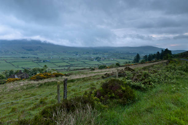 Slievenaglogh View, east northeast II On the northeast slope of Slievenaglogh peak (Irish: Sliabh na gCloch) on the road from Mullaghattin Townland to Riverstown.  Here we look northeast from the Slievenaglogh Townland, the valley between Slieve Foy and Slievenaglogh peaks.  The view includes Little River, Ballycoly Townland and Castletown River.  Adjacent is a sheep pasture with a farm ruin behind the yellow flowered gorse (whin bush, scientific name Ulex).  Slieve Foy is the far ridge lost in clouds.  Early morning, late May 2014. michael stephen wills Slievenaglogh stock pictures, royalty-free photos & images