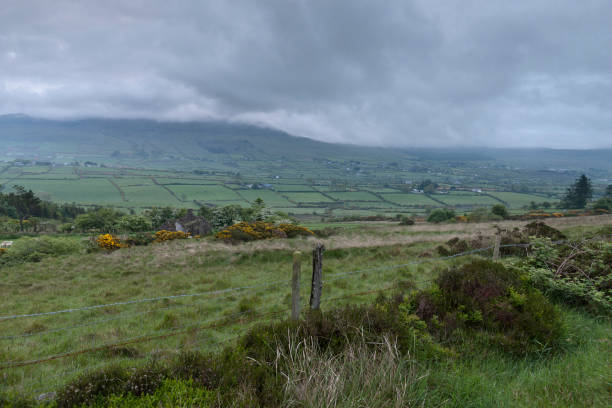 Slievenaglogh View, northeast On the northeast slope of Slievenaglogh peak (Irish: Sliabh na gCloch) on the road from Mullaghattin Townland to Riverstown.  Here we look northeast from the Slievenaglogh Townland, the valley between Slieve Foy and Slievenaglogh peaks.  The view includes Little River, Ballycoly Townland and Castletown River.  Adjacent is a sheep pasture with a farm ruin behind the yellow flowered gorse (whin bush, scientific name Ulex).  Slieve Foy is the far ridge lost in clouds.  Early morning, late May 2014. michael stephen wills Slievenaglogh stock pictures, royalty-free photos & images