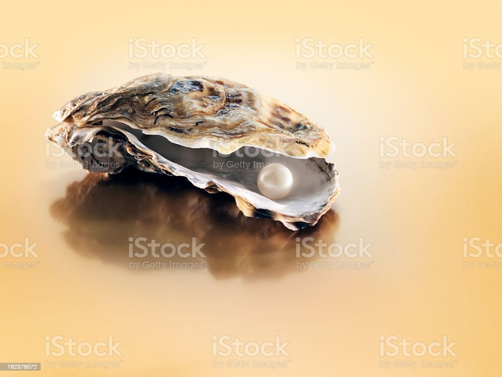 Slightly open oyster with pearl inside royalty-free stock photo