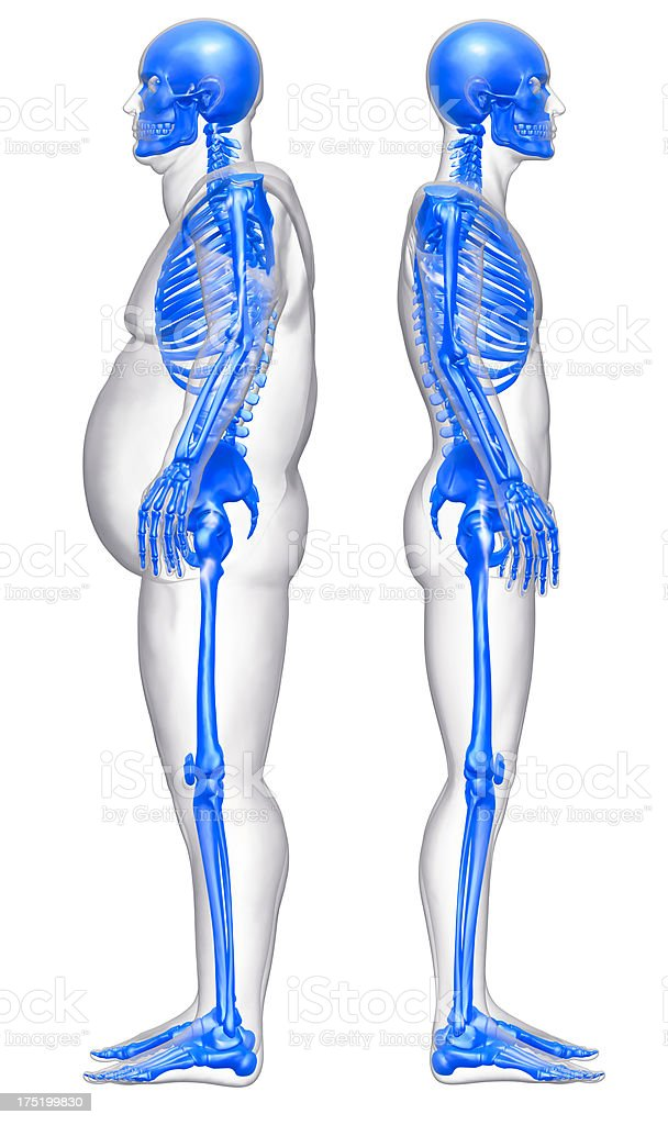 Slim and obese man compared stock photo