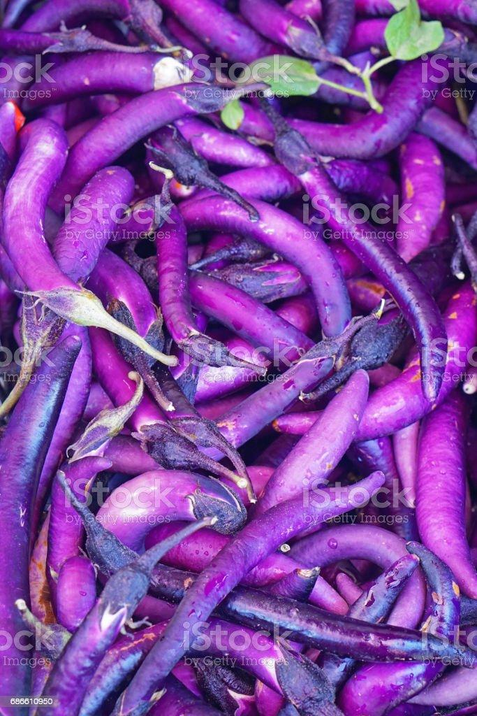 Slim eggplant photo libre de droits