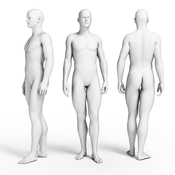 slim male figure stock photo