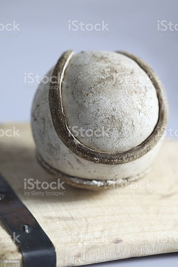sliotar and hurley royalty-free stock photo