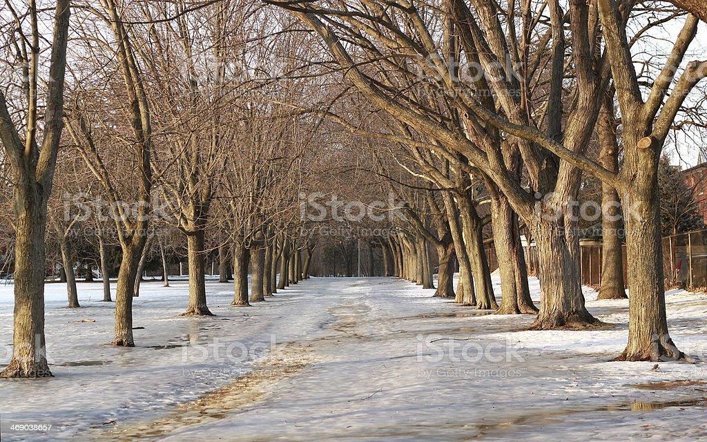 Slippery Pedestrian Walkway in Winter, Toronto, Ontario, Canada royalty-free stock photo