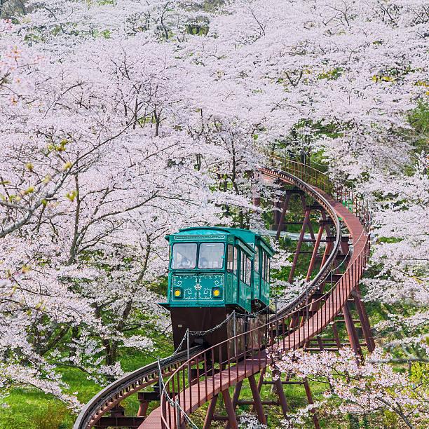 Slope car at Funaoka Castle Ruin Park,Sendai,Japan stock photo