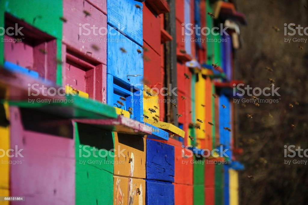 Slovenian Colored Beehives stock photo