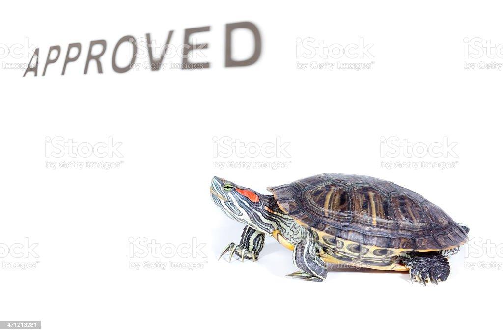 Slow approval process stock photo