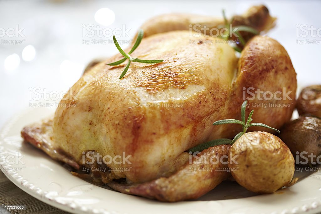 A slow baked whole roasted white chicken stock photo