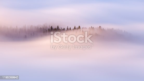 istock Slow moving clouds over the pine forest in the German alps - long exposure 1195269942