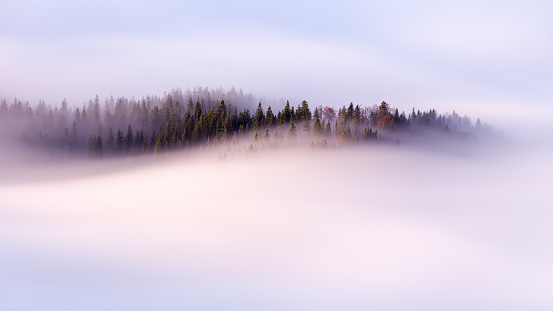 Slow moving clouds over the pine forest in the German alps