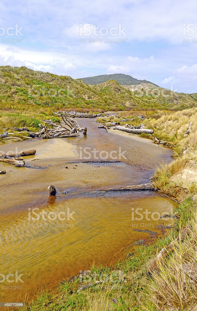 Slow Moving Creek amongst the Sand Dunes stock photo