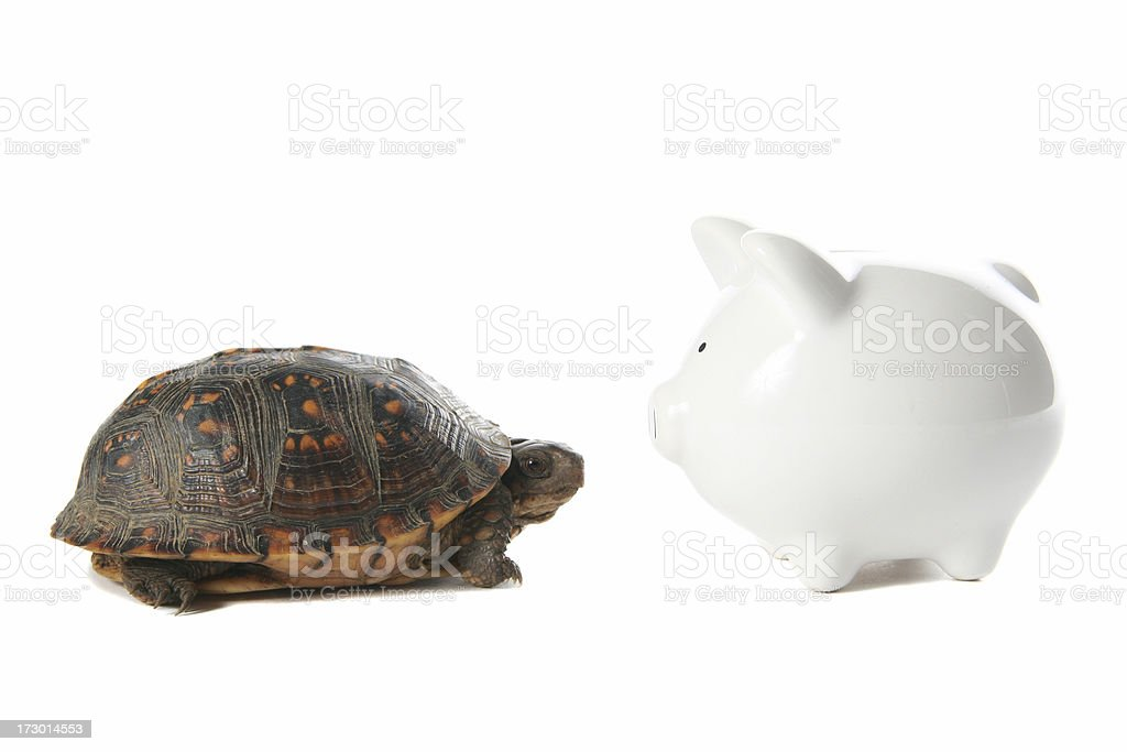 Slow Saving royalty-free stock photo