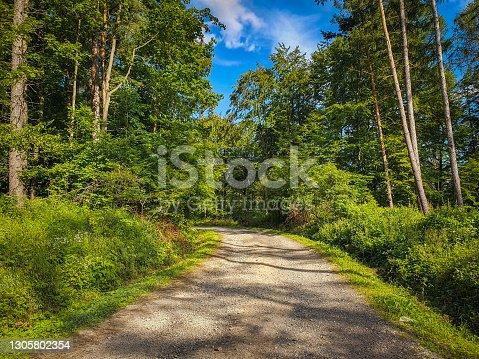 istock Smal trip in sunday to the poland bieszczady 1305802354