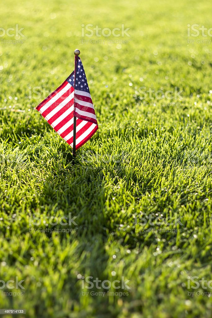 Small American flag on grass stock photo