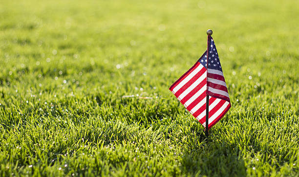 Small American Flag stock photo