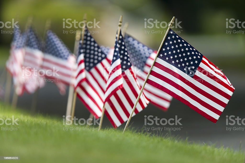 Small American Flags stock photo