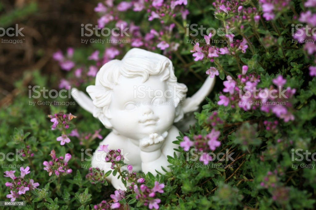 Small angel figurine between thyme flower blooms stock photo