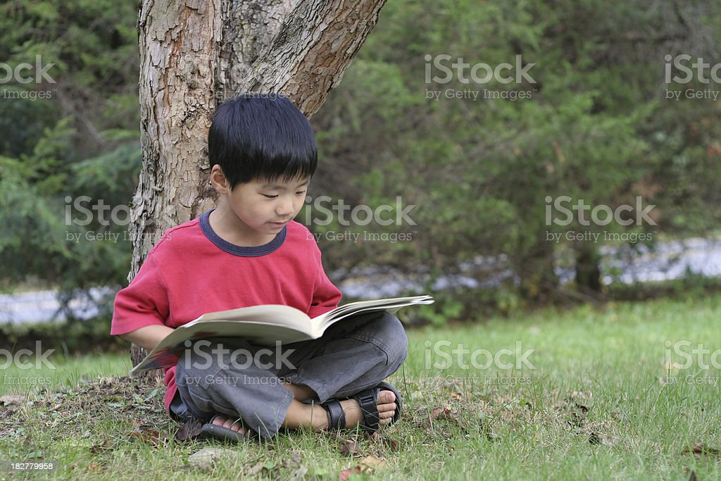 Small Asian boy reading book under a tree in summer royalty-free stock photo