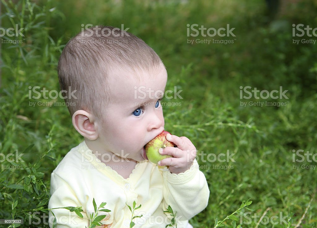 small baby biting apple royalty-free stock photo