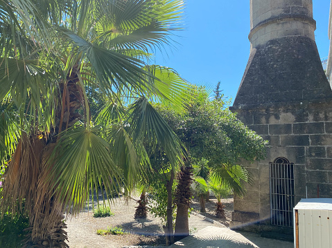 Small beautiful neat stone clay Arab Islamic Muslim houses with round domes in the desert with palm trees in a tropica.