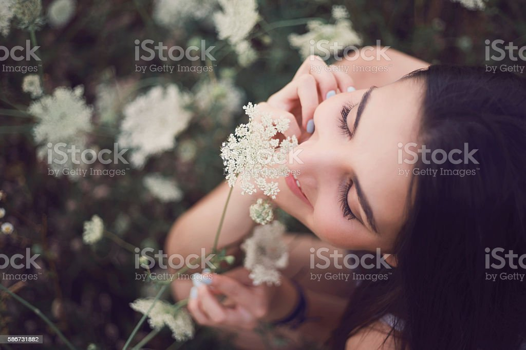 Small Bits Of Loveliness stock photo