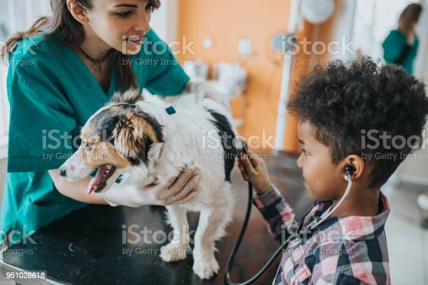 Small black girl listening to her dogs heartbeat at vets office picture id951026618?b=1&k=6&m=951026618&s=612x612&h=pejdfllirnazxhkty8h4kgojogiawdxynny9wx t4sg=