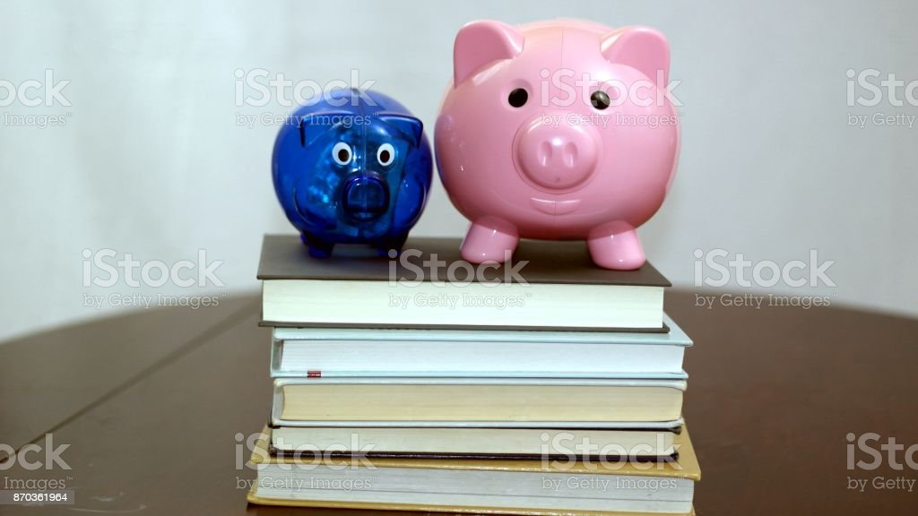 A small blue and larger pink piggy bank stand atop a stack of textbooks. stock photo
