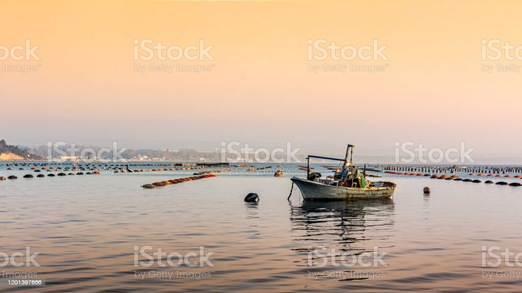 Small Boat Moored In Vicinity Of Mussil Plantation In ...