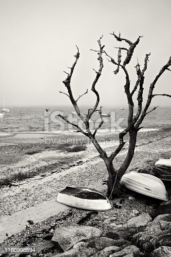 Small dingy boats are stored on shore and moored boats are seen in a foggy bay along a shoreline beach in Cape Cod, Massachusetts, New England, USA.