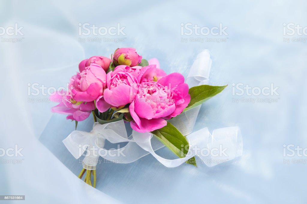 Small bouquet of pink peonies on a blue background stock photo