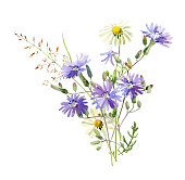 A small bouquet of watercolor blue wild flowers