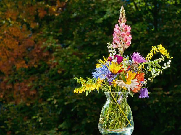 bouquet fleurs des champs photos et images libres de droits istock. Black Bedroom Furniture Sets. Home Design Ideas