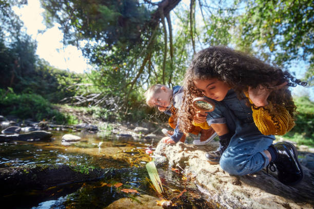 Small boy and girl looking at river with magnifier stock photo